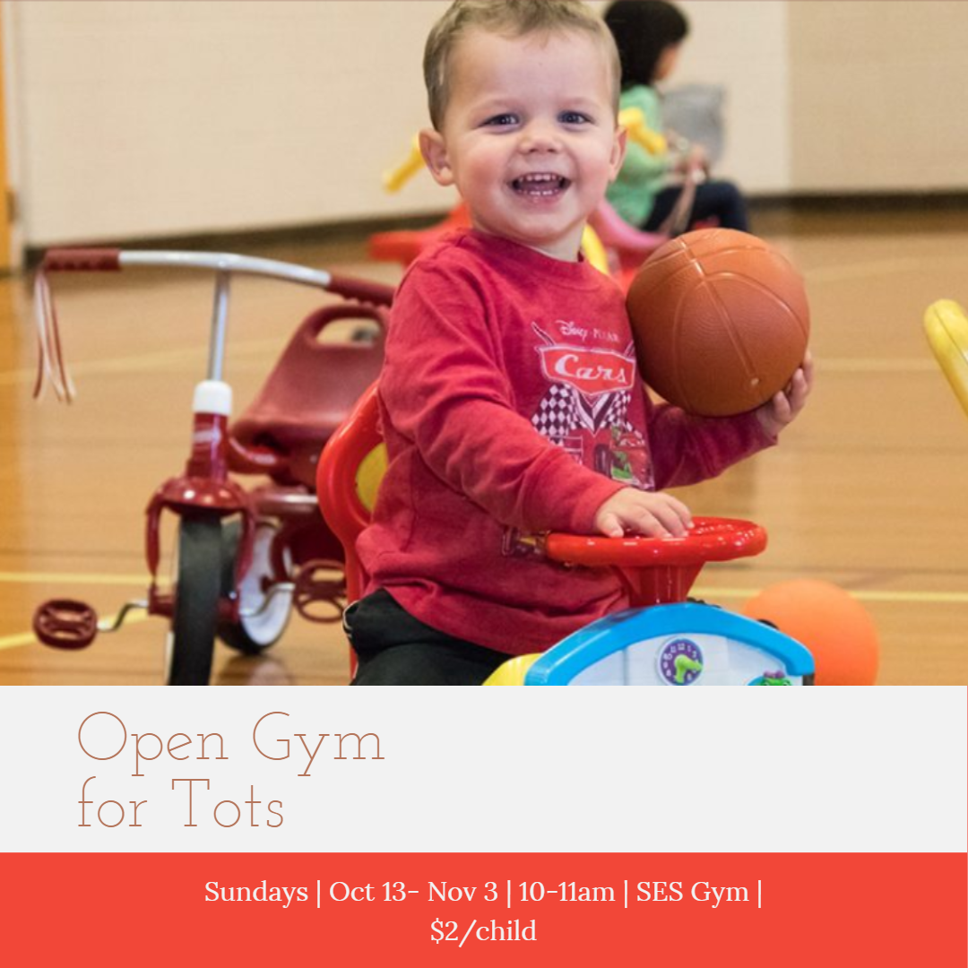Open Gym for Tots